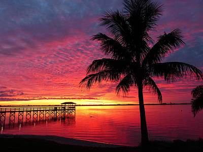 Photograph - Florida Sunset II by Elaine Franklin