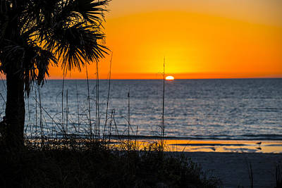 Florida Sunset Art Print by Kevin Cable