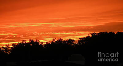 Photograph - Florida Sunset by Lora Duguay