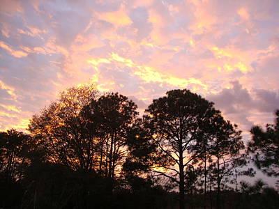 Photograph - Florida Sunset by Veronica Rickard