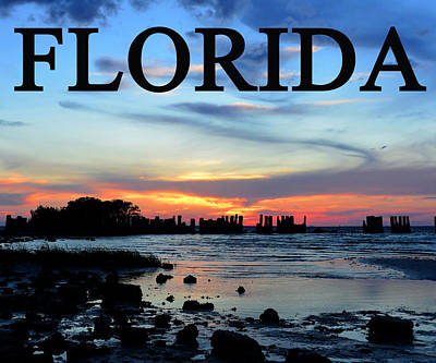 Photograph - Florida Work D by David Lee Thompson