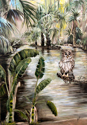 Florida's Barred Owl Art Print