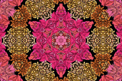 Kaleidoscope Digital Art - Florissimo Mandakal S01-02b by Variance Collections