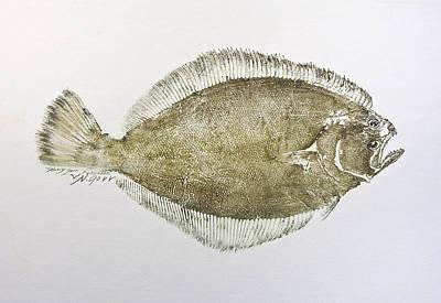 Mixed Media - Flounder by Nancy Gorr