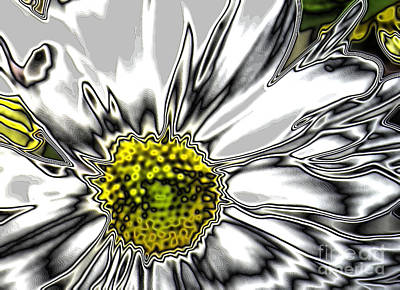 Digital Art - Glowing  White And Grey Flower by Oksana Semenchenko