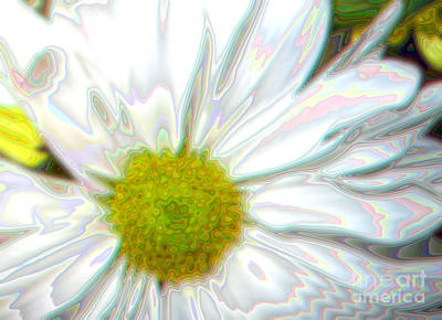 Digital Art - Flower. Daisy by Oksana Semenchenko