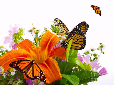 Flower And Butterfly Art Print by Boon Mee