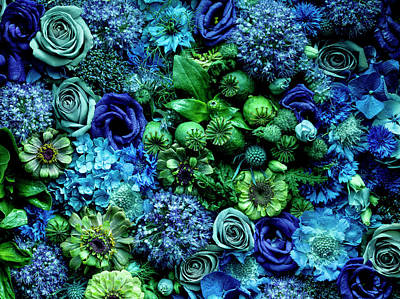 Photograph - Flower Arrangment, Full Frame by Jonathan Knowles