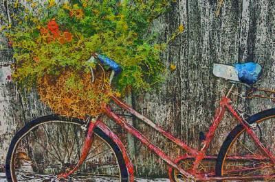 Transportation Digital Art - Flower basket on a bike by Mark Kiver