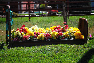 Flower Flowers Bed Iron Cast Dirt Colorful Grass Garden Fence Huntsville Photograph - Flower Bed by Holly Blunkall