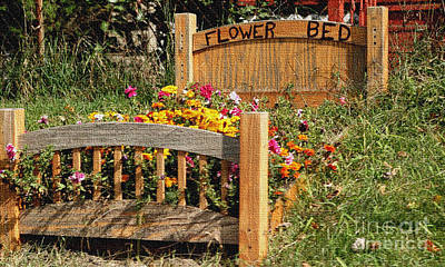 Photograph - Flower Bed by Living Color Photography Lorraine Lynch