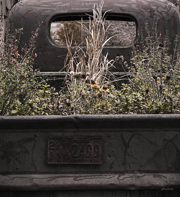 Art Print featuring the photograph Flower Bed - Nature And Machine by Steven Milner