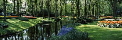 Keukenhof Gardens Photograph - Flower Beds And Trees In Keukenhof by Panoramic Images