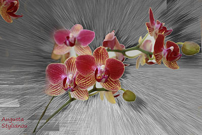 Silver Turquoise Digital Art - Flower Branch by Augusta Stylianou
