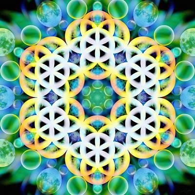 Mixed Media - Flower Bubbles by Derek Gedney
