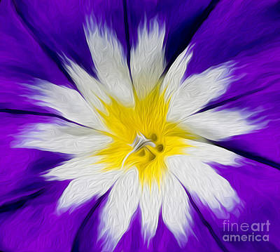 Digital Art - Flower Burst by Kenneth Montgomery