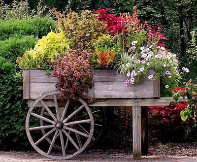Flower Cart In Bloom Original by Rosanne Jordan