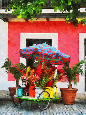 Flower Cart San Juan Puerto Rico Art Print by Susan Savad