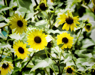 Photograph - Flower -cheerful Sunflowers -  Luther Fine Art by Luther Fine Art