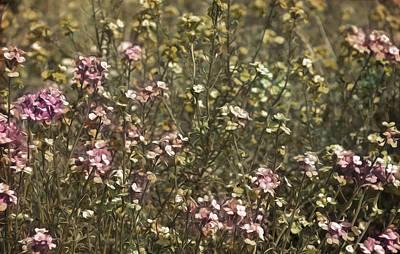 Flower Field Art Print by Svetlana Sewell