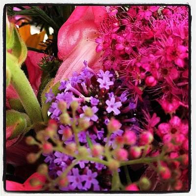 #flower #flowers #colorful #pink Art Print