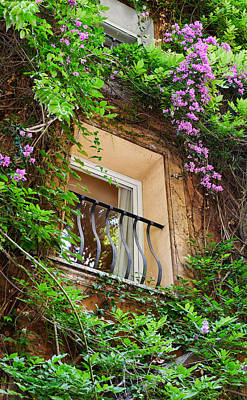 Photograph - Flower-framed Window by Herb Paynter