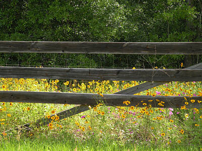 Photograph - Flower Gate by Becky Erickson