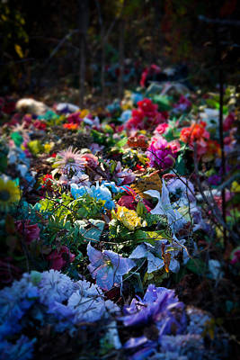 Photograph - Flower Graveyard by Melinda Fawver