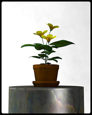 Digital Art - Flower In A Terracotta Pot... by Tim Fillingim