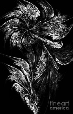 White Fractals Digital Art - Flower In Black-and-white by Klara Acel