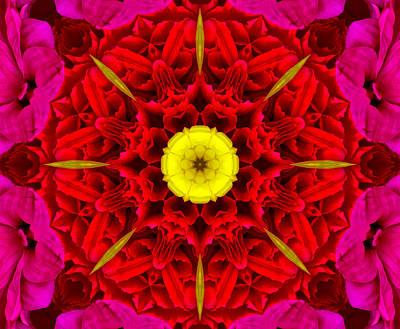 Photograph - Flower Kaleidoscope by Bill Barber