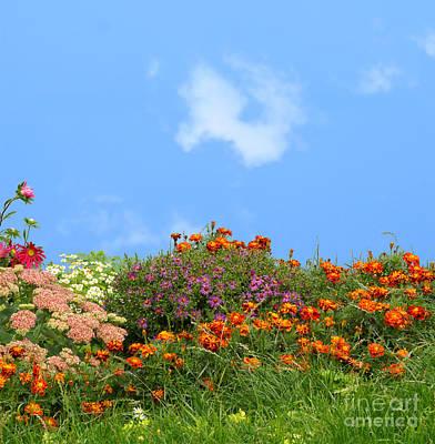 Flower Landscape Art Print by Boon Mee