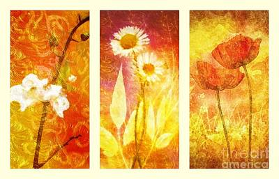 Emotion Mixed Media - Flower Love Triptic by Mo T