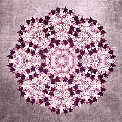 Flower Mandala Pink Art Print by Filippo B