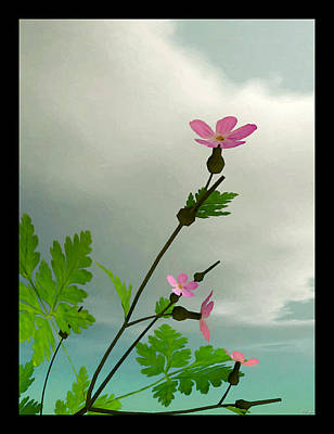 Digital Art - Flower Morning... by Tim Fillingim