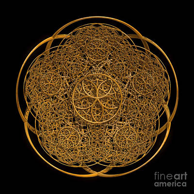Digital Art - Flower Of Life by Olga Hamilton