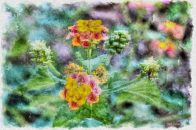 Photograph - Flower Pastel 2 by Tom Culver