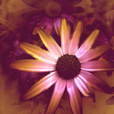Photograph - Flower Pink And Yellow by Ann Powell