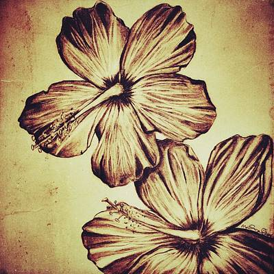 Floral Digital Art Drawing - Flower Play 3 by Marenda Smith