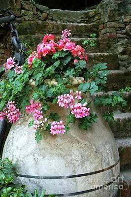 Photograph - Flower Pot 8 by Allen Beatty