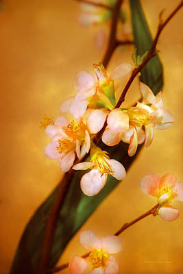 Flower - Sakura - A Touch Of Spring Print by Mike Savad