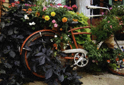 Photograph - Flower Shop Bike by Curtis Dale