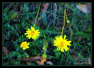 Flower Art Print by Sky Skier