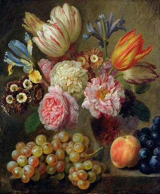 Flower Study  Art Print by Balthasar Denner