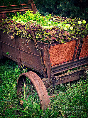 Wagon Photograph - Flower Wagon by Edward Fielding