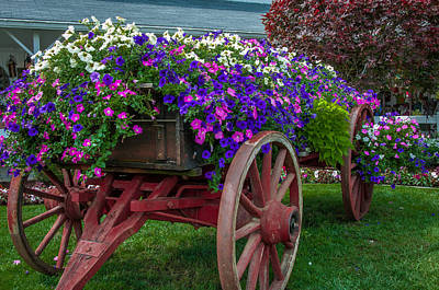 Flower Wagon Art Print by Gene Sherrill