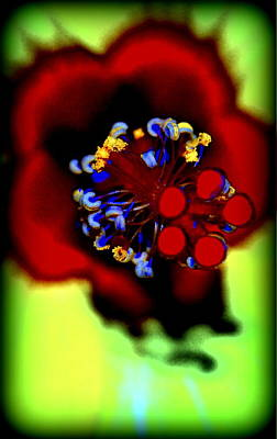 Flower With'in Art Print by Kathy Sampson