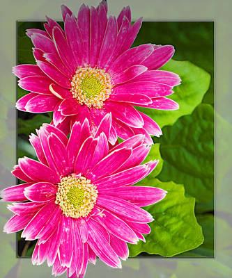 Focus On Foreground Digital Art - Flower1 by Walter Herrit