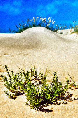 Sand Dunes Painting - Flowering Dunes - Outer Banks by Dan Carmichael