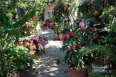 Flowering Entrance Art Print by Andrea Simon